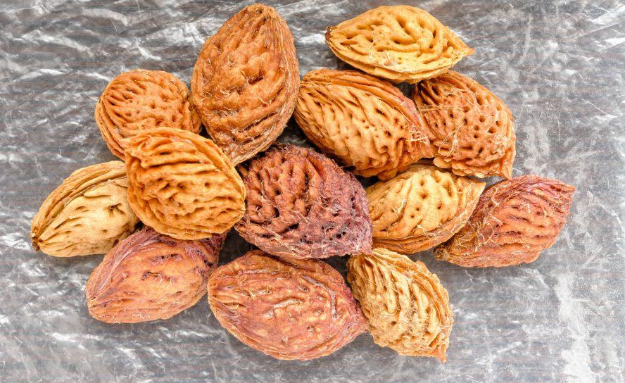 Pfirsichkerne als Peeling